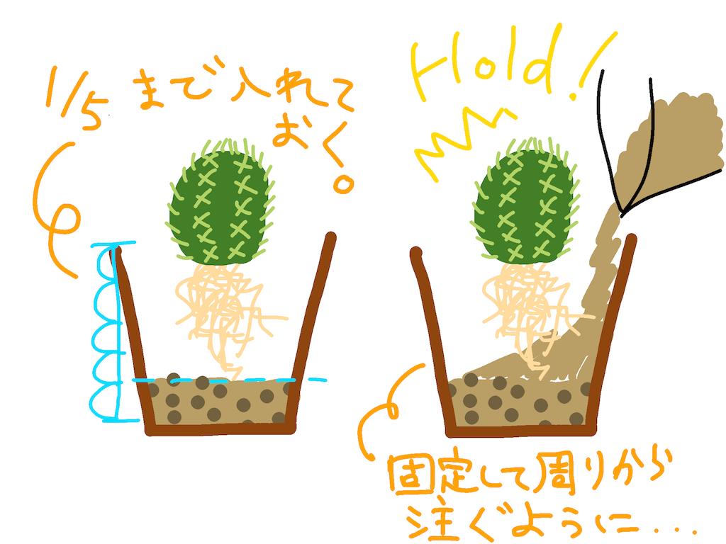 f:id:sinajirou:20181120000307p:image