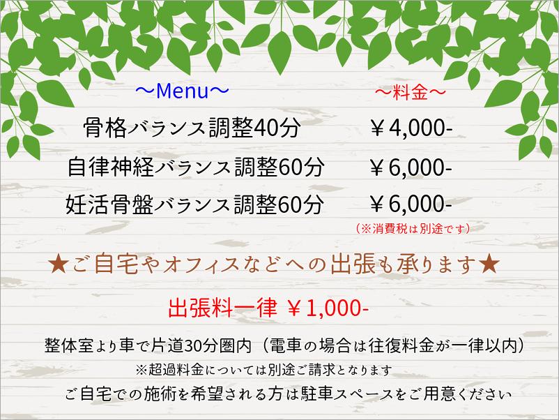 f:id:sindo-seitai:20180804152858j:plain