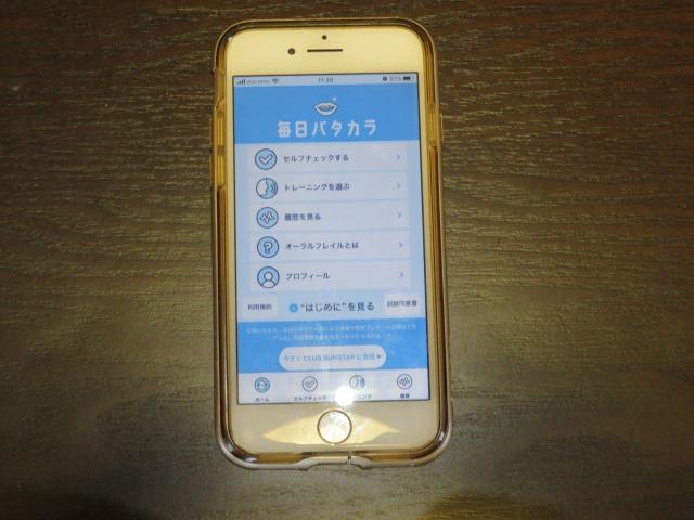 f:id:sinia-yakudati:20210123114329j:plain
