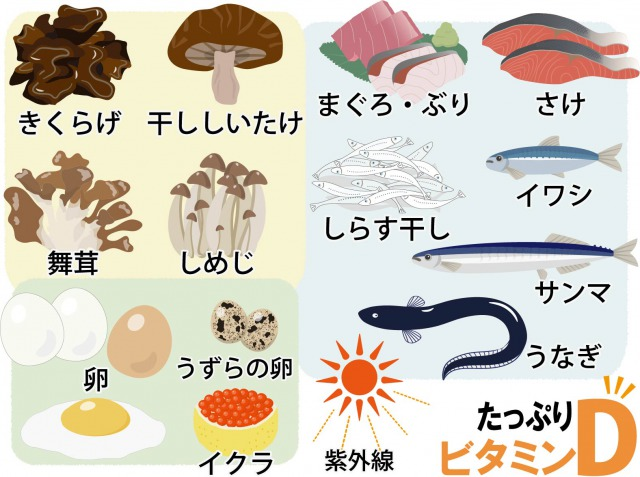 f:id:sinia-yakudati:20210420094449j:plain