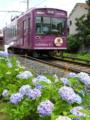 『京都新聞写真コンテスト 梅雨の合間』