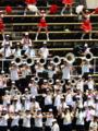 京都新聞写真コンテスト 「大応援団」