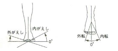 f:id:sinka-body:20170803190234j:plain