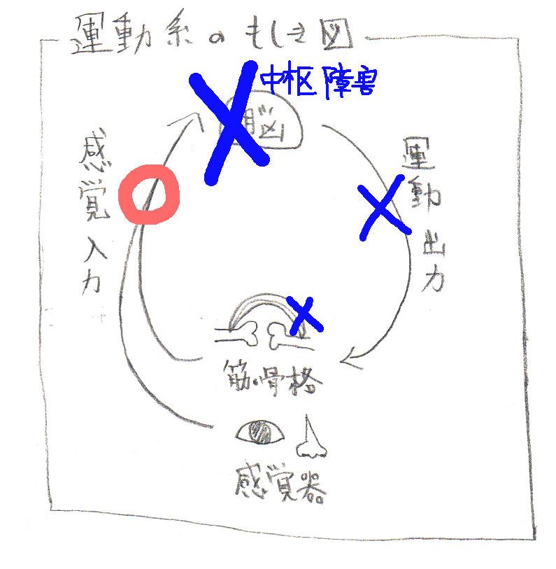 f:id:sinka-body:20171212171603j:plain