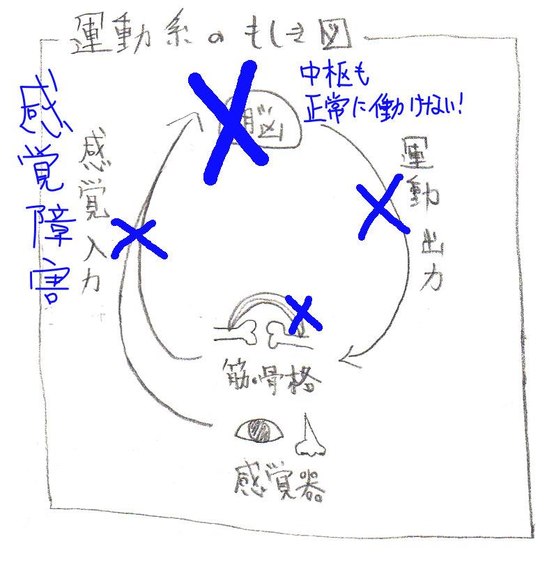 f:id:sinka-body:20171212171610j:plain