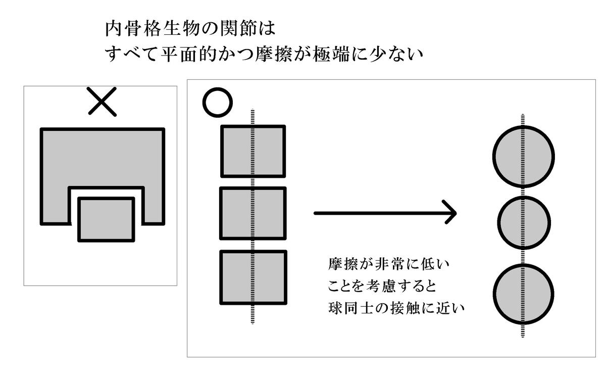 f:id:sinka-body:20200131183225j:plain