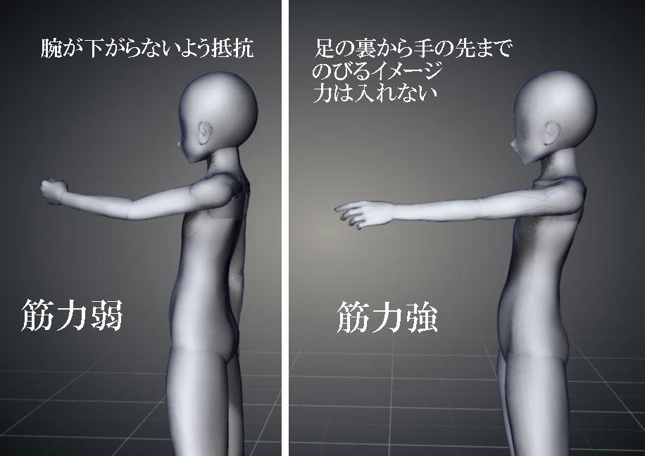 f:id:sinka-body:20200131190202j:plain