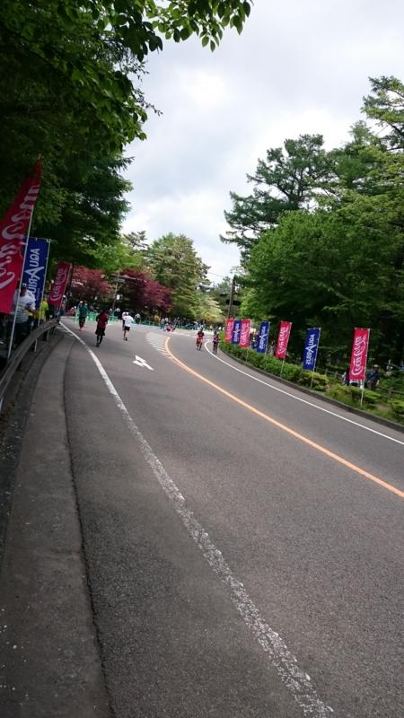 f:id:sinnosuke22:20170528115913j:image