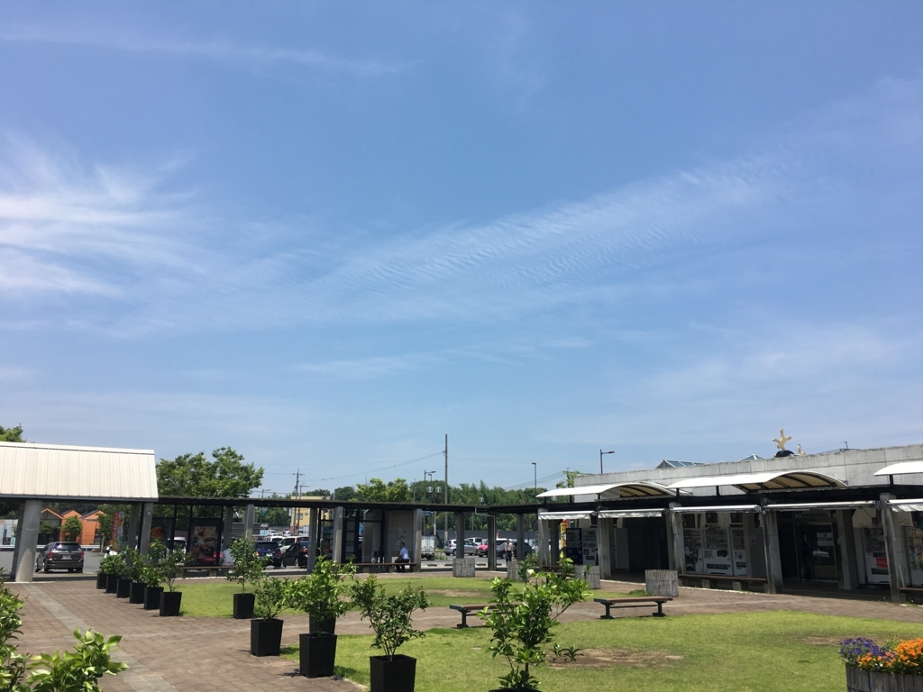 f:id:sinobu-ms:20180623205916j:plain