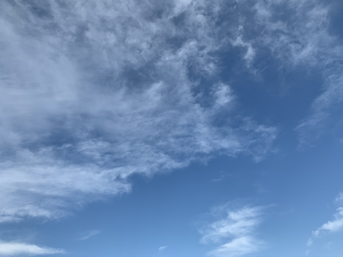 f:id:sinobu-ms:20191120203212j:plain