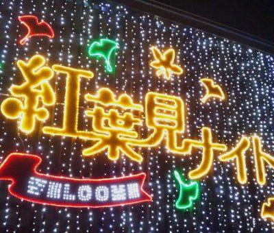 f:id:sinobu_kg:20190426085719j:plain