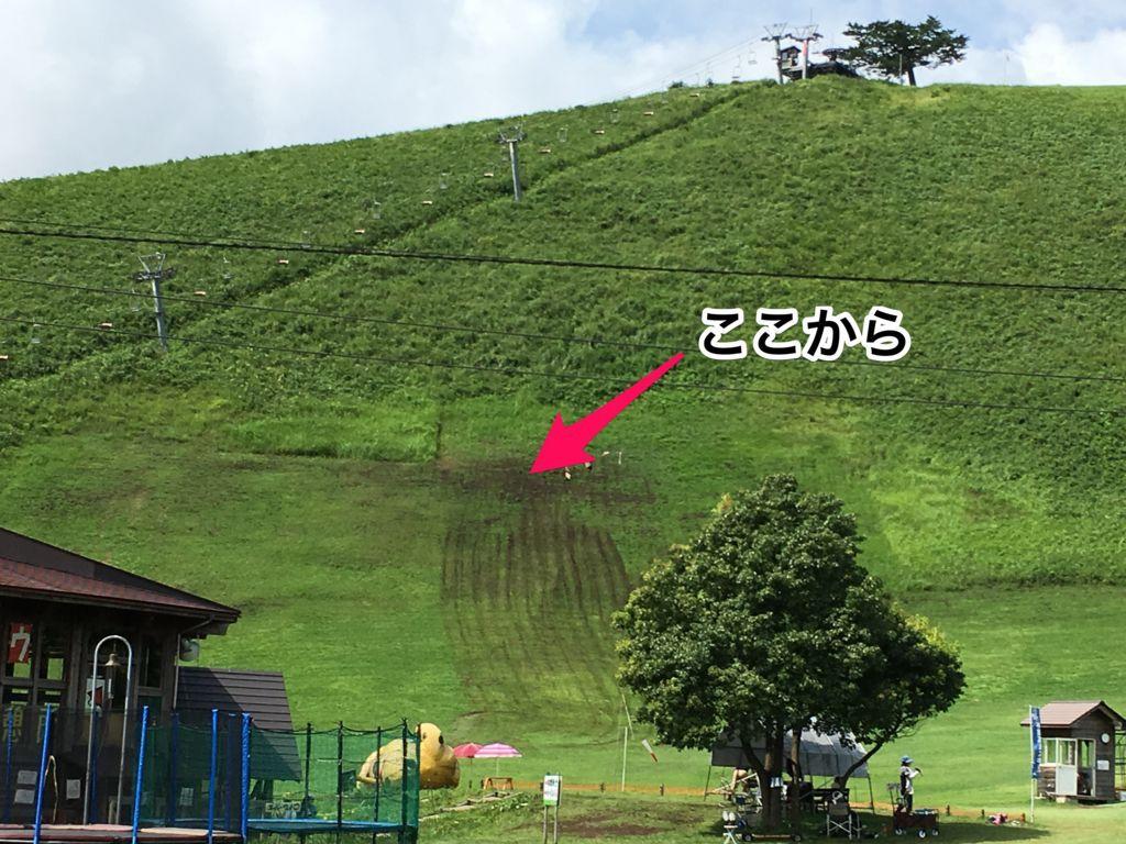 f:id:sinpapa-yusuke:20170821172022j:plain