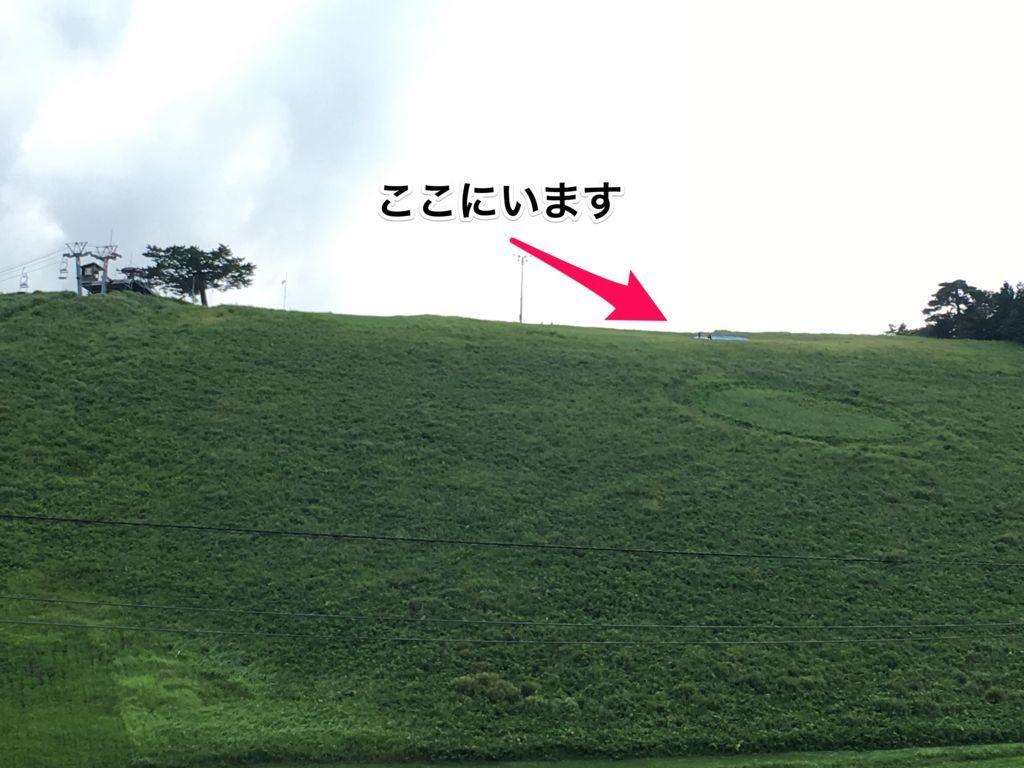 f:id:sinpapa-yusuke:20170821200543j:plain