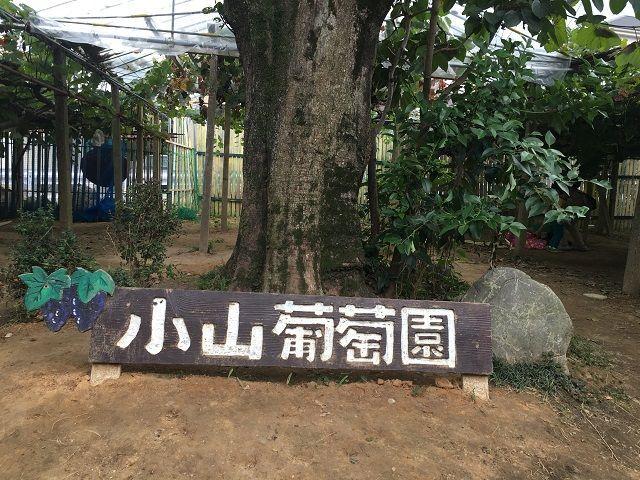 f:id:sinpapa-yusuke:20170828202425j:plain