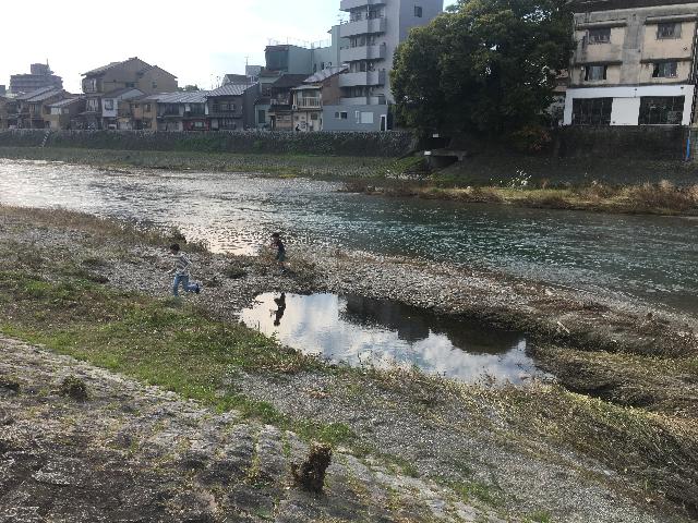 f:id:sinpapa-yusuke:20171107213831p:plain