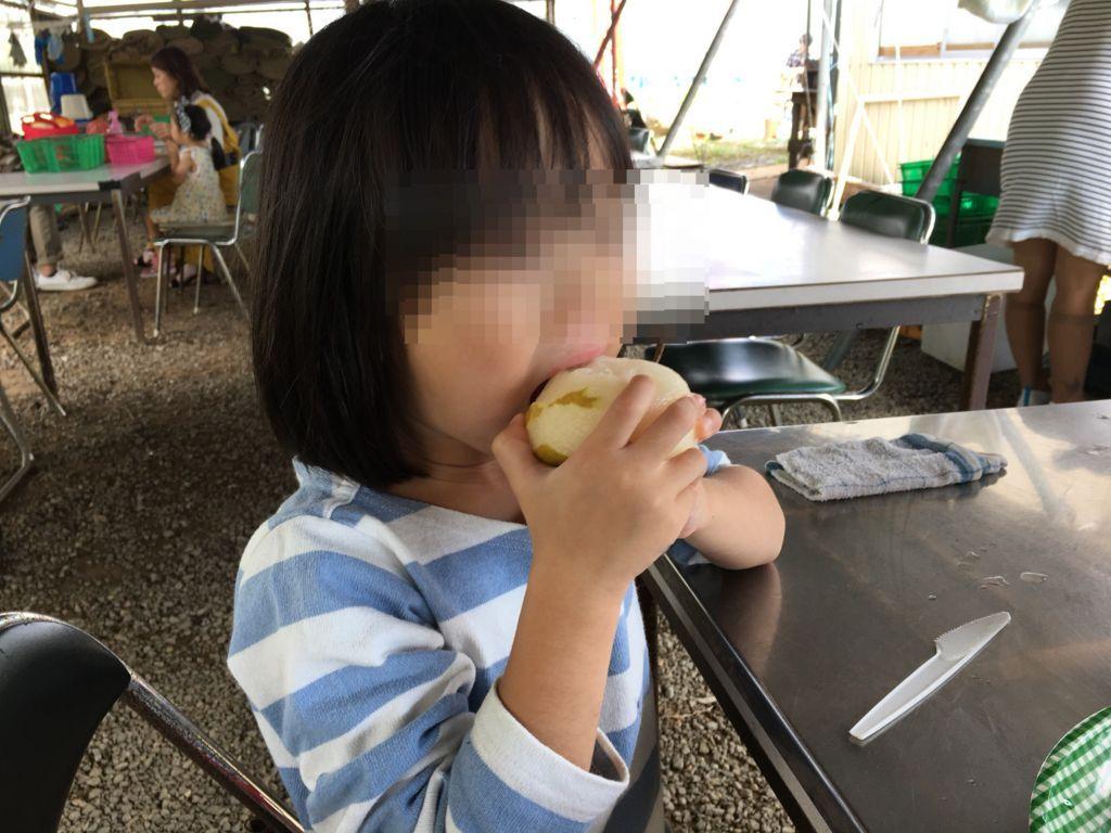f:id:sinpapa-yusuke:20180815220507j:plain