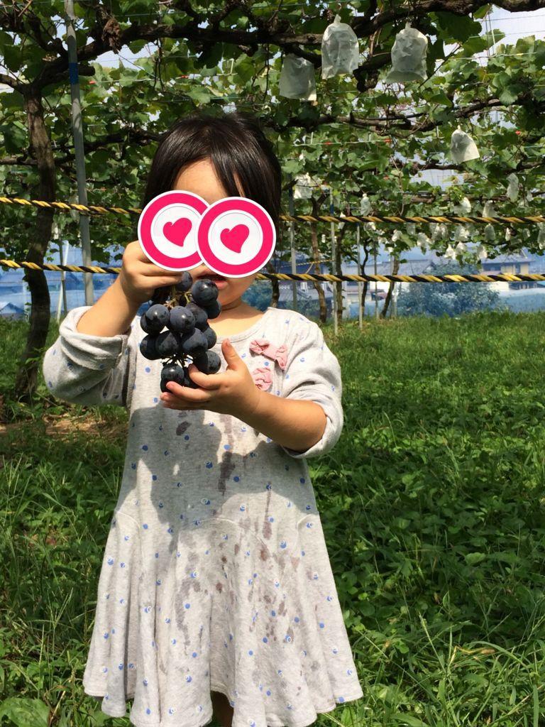 f:id:sinpapa-yusuke:20180819182525j:plain