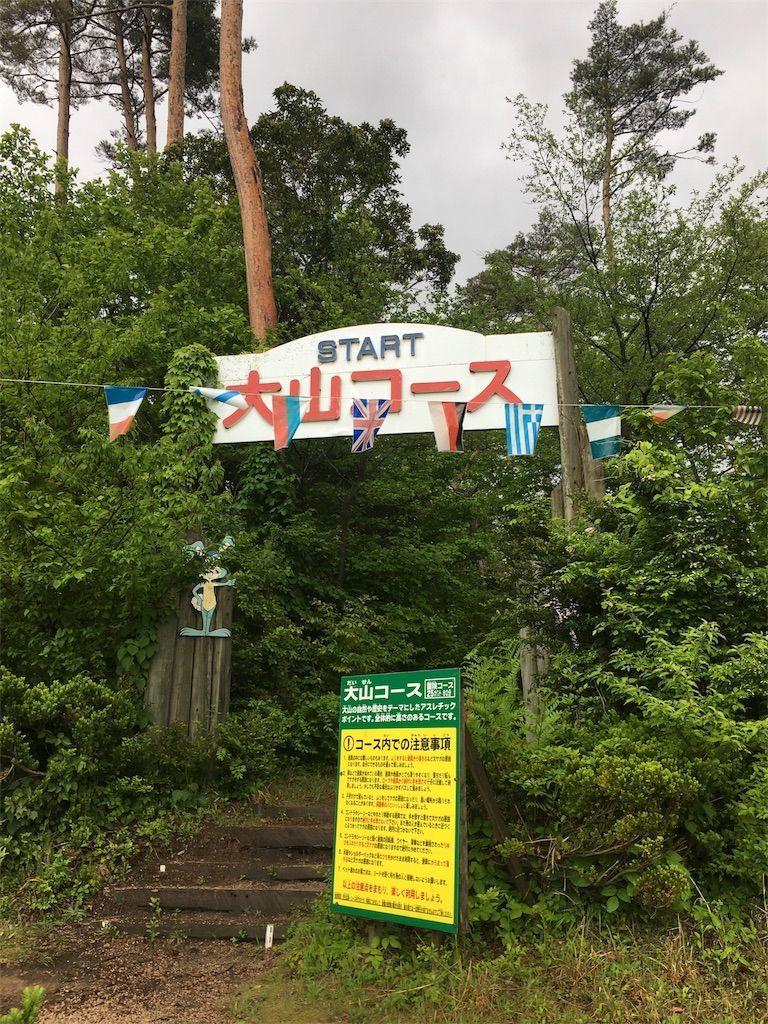 f:id:sinpapa-yusuke:20180823080055j:image
