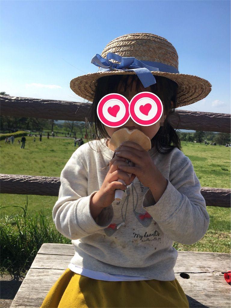 f:id:sinpapa-yusuke:20180824081348j:image