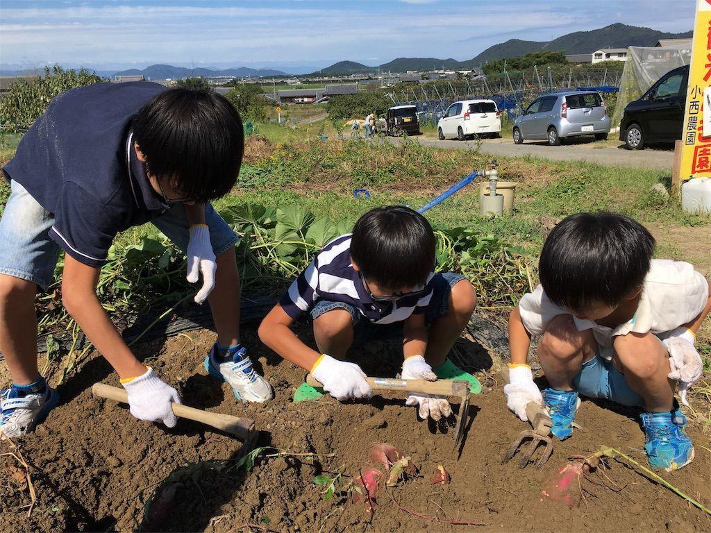 f:id:sinpapa-yusuke:20180903082456j:image