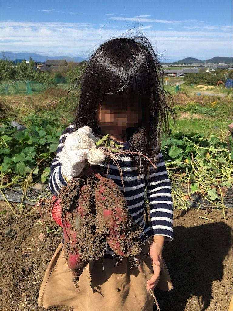 f:id:sinpapa-yusuke:20180903083840j:image