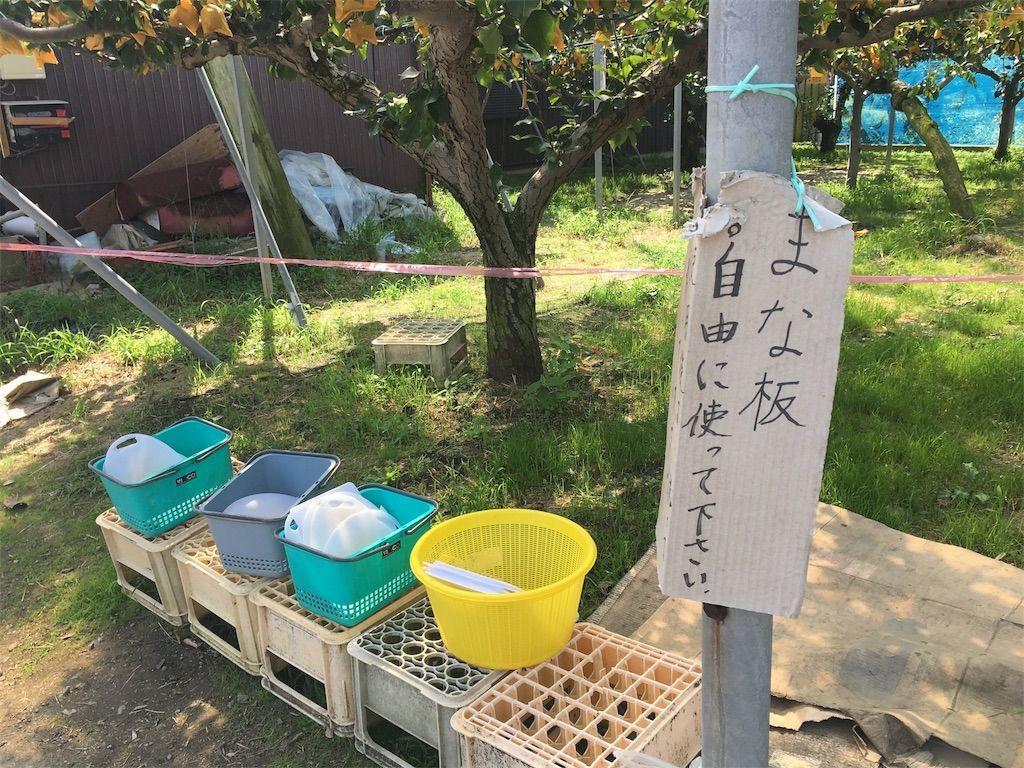 f:id:sinpapa-yusuke:20180918074348j:image
