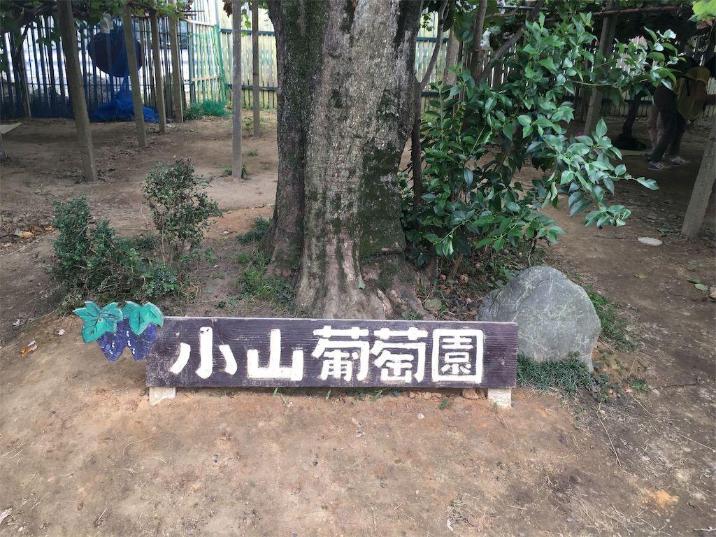 f:id:sinpapa-yusuke:20190917124546j:image