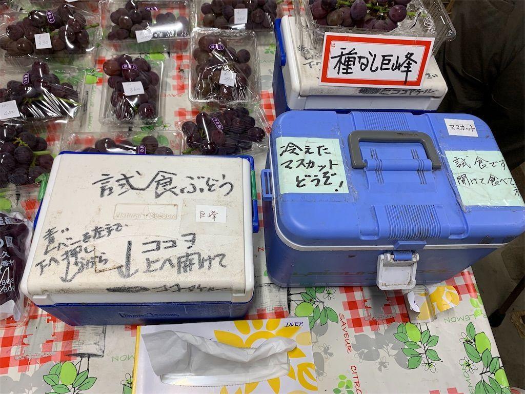 f:id:sinpapa-yusuke:20190920081032j:image