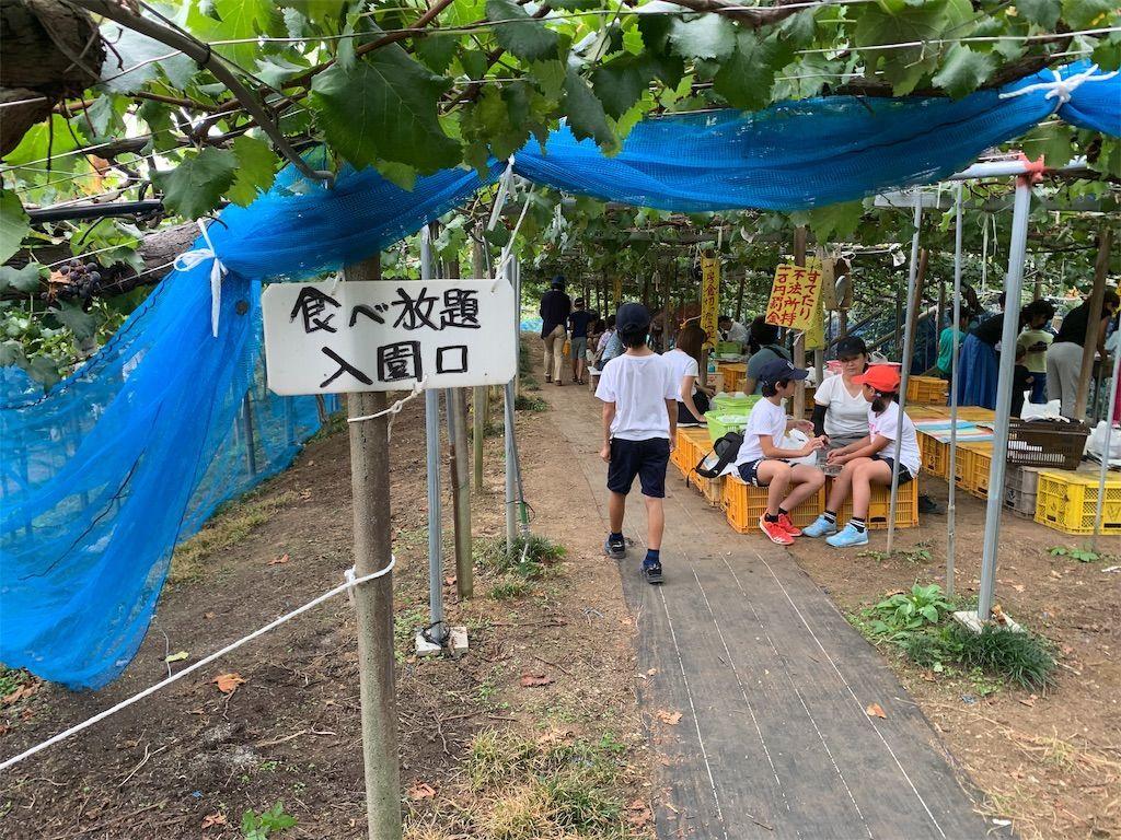 f:id:sinpapa-yusuke:20190920081345j:image