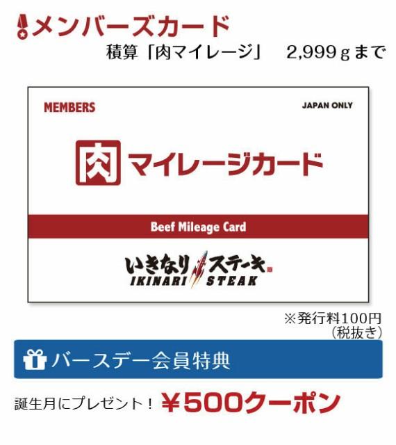 f:id:sinsimakoto:20170527170146j:image