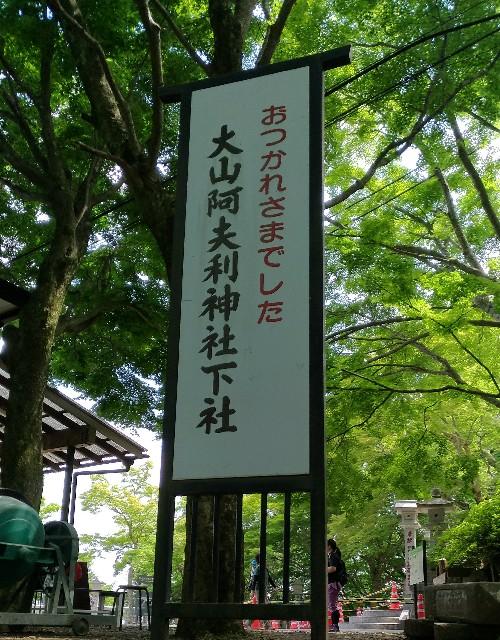 f:id:sinsimakoto:20170618151917j:image