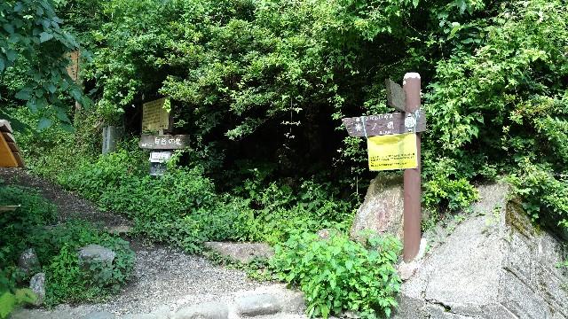 f:id:sinsimakoto:20170910225637j:image