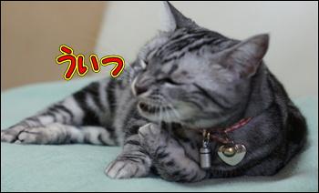 f:id:sion1005:20130430151443j:image