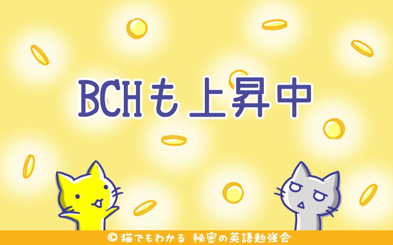 BCHも上昇中