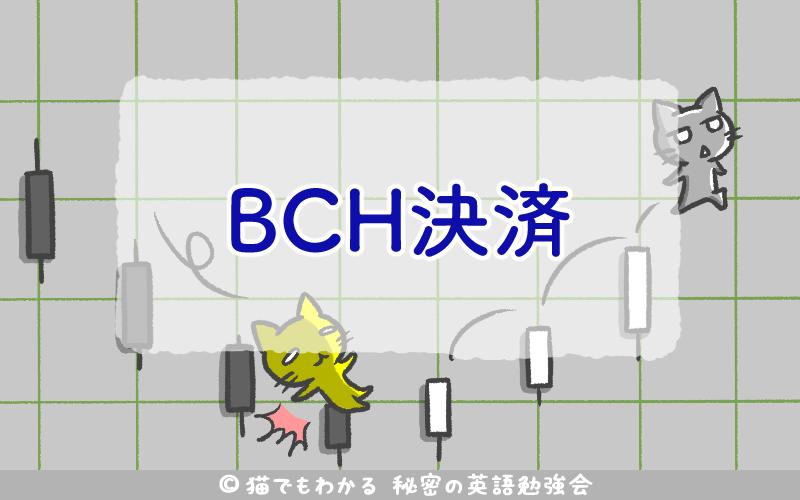 BCH決済