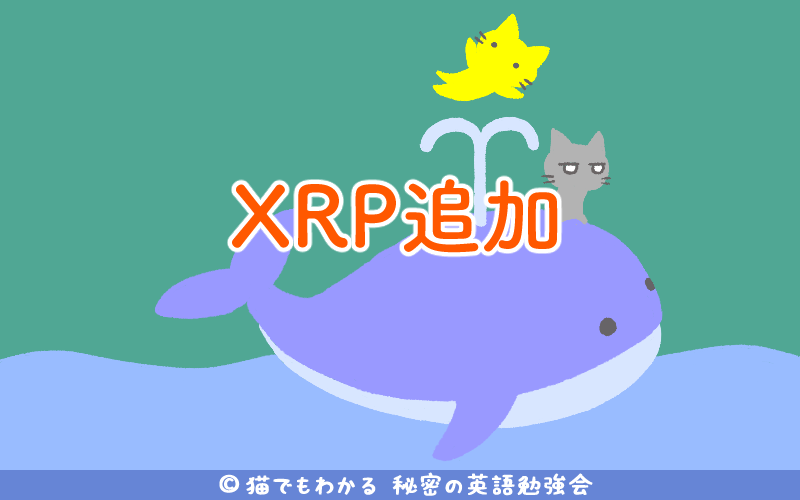 XRP追加