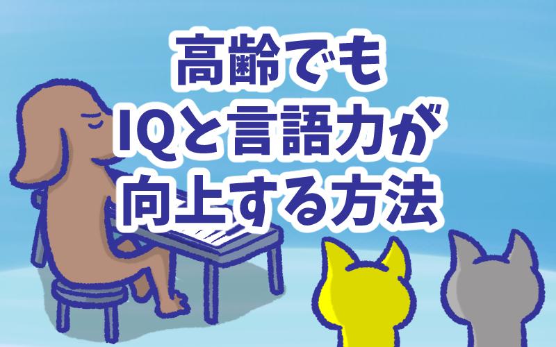 IQと言語力が向上する方法