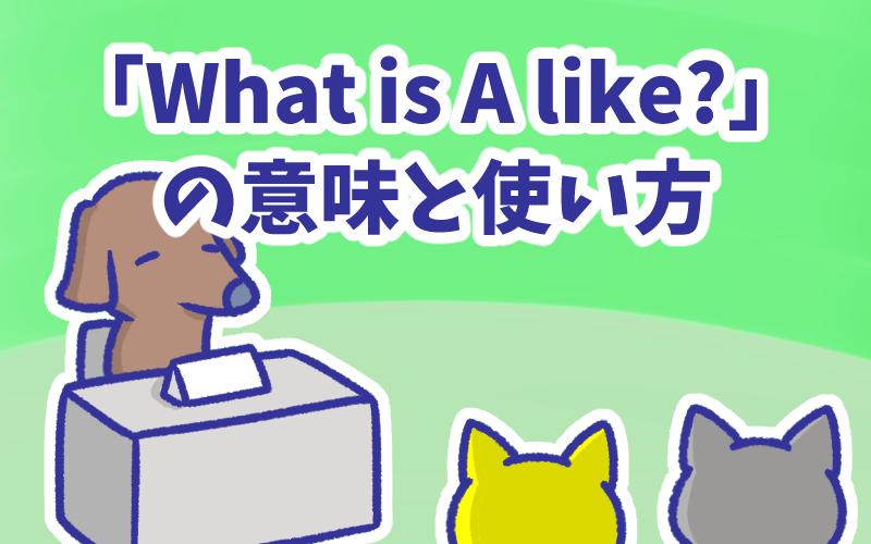 What is A like の意味と使い方