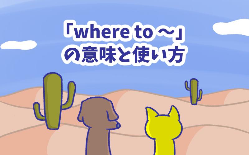 Where to  when to  whether to  の意味と使い方