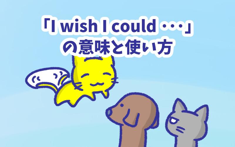 I wish I could  の意味と使い方