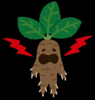 Fantasy mandrake mandragora