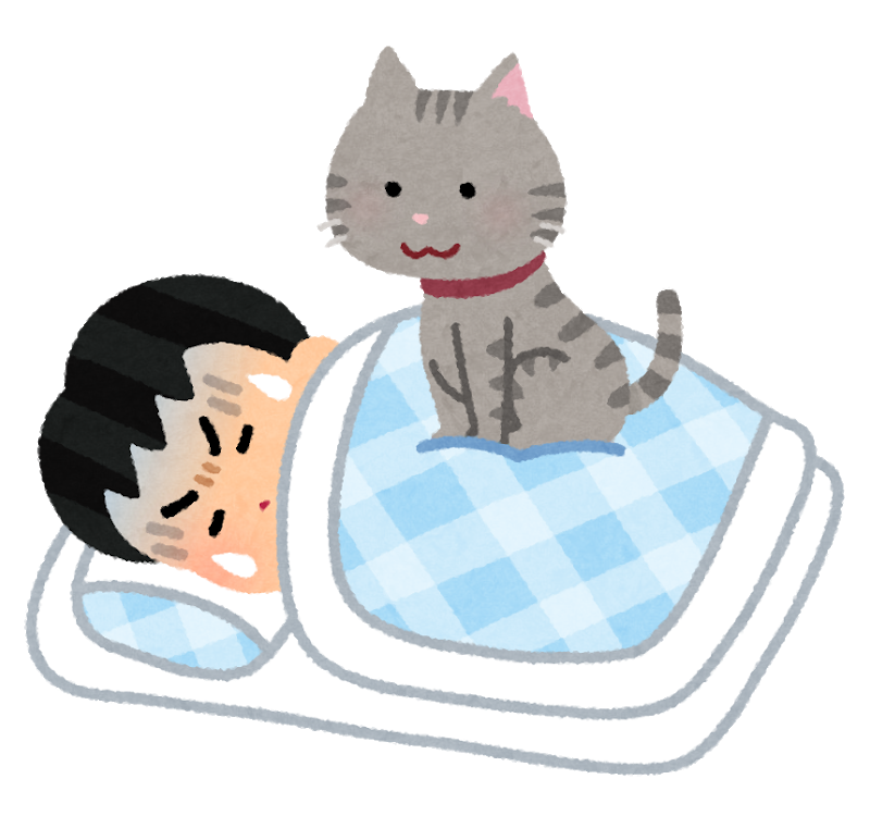 Pet cat omoi sleep man