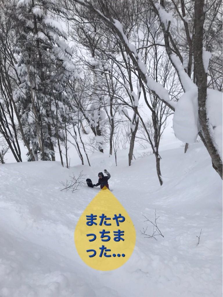 f:id:sirokuma390:20190131134909j:image