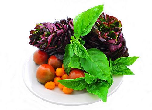 健康的な食事のイメージ