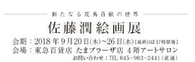 f:id:sisiuo0905:20180825172305j:image