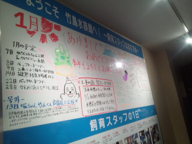 f:id:sister-akiho:20200129212814j:plain