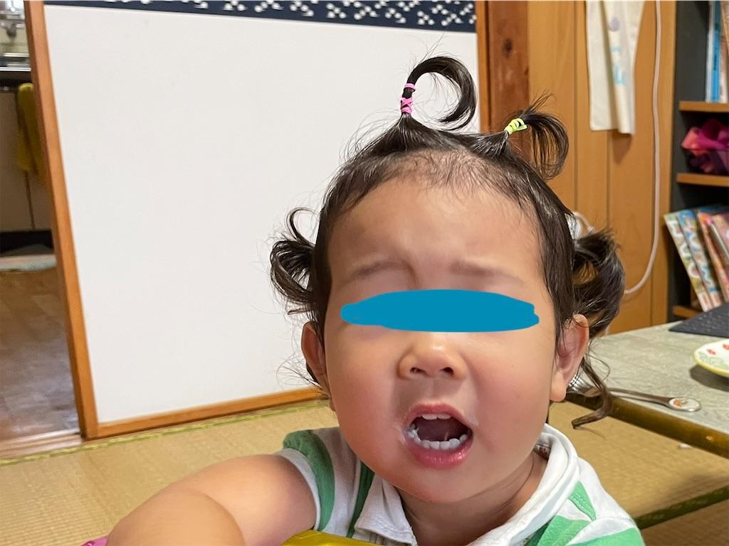 f:id:sisyamozuzu:20210720193128j:image