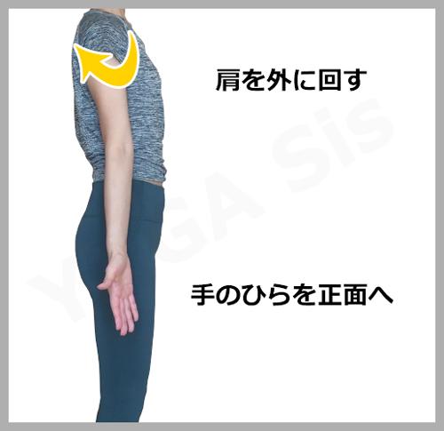 腕の正しい位置2|滋賀県野洲市 YOGAサロン Sis