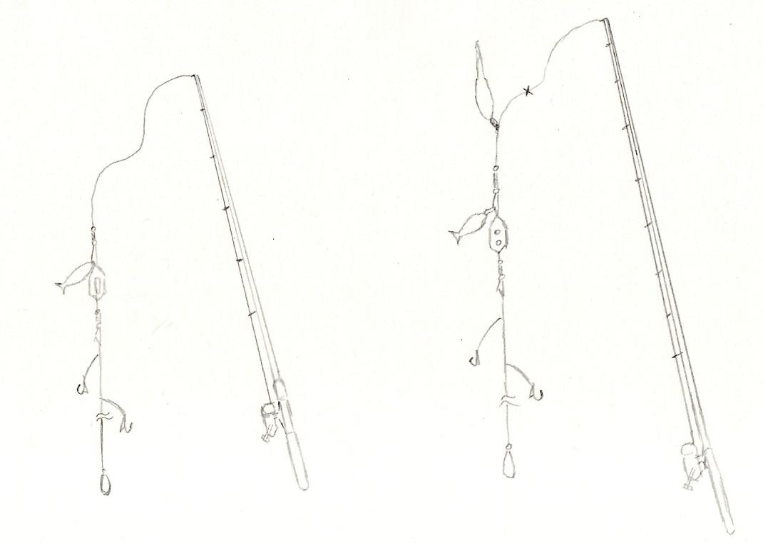 f:id:sizyuukara-1979:20200914084657j:plain