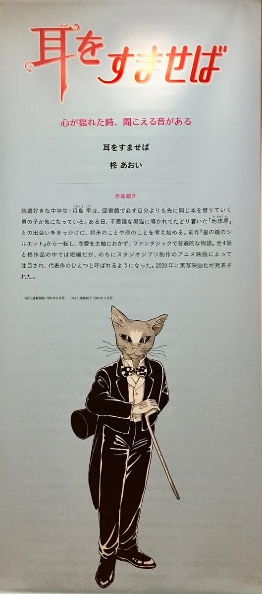 f:id:sizyuukara-1979:20210131185210j:plain